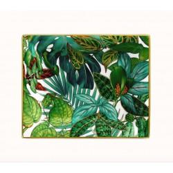 Passifolia vuota tasche